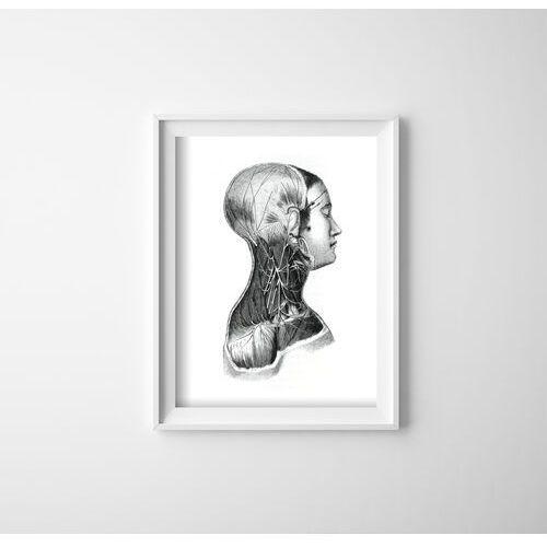 Vintageposteria.pl Plakaty w stylu retro plakaty w stylu retro anatomiczne nadruki na mięśniach szyi