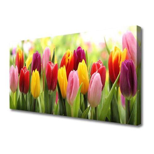 Obraz Canvas Tulipany Kwiaty Natura