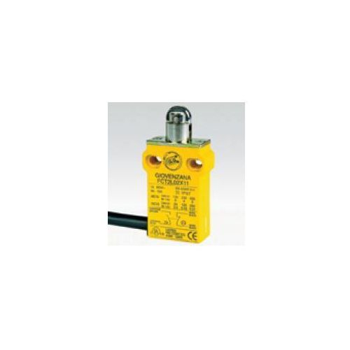 Boczne wyjście kabla, popychacz z końcówką stalową popychacz z rolką X11 FCT2L02