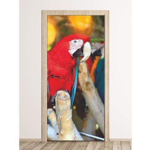 Fototapeta na drzwi czerwona papuga fp 6212 marki Wally - piękno dekoracji