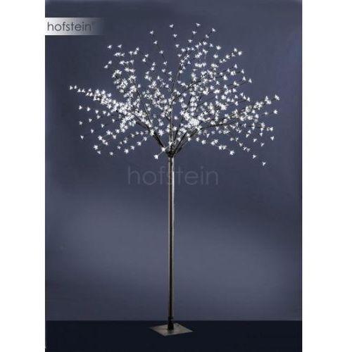 drzewo led czarny, 600-punktowe - nowoczesny/design - obszar zewnętrzny - direkt - czas dostawy: od 3-6 dni roboczych marki Leuchten direkt