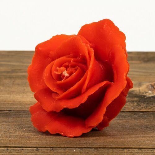 Świeca woskowa róża czerwona (45 mm / 80 mm) marki Łysoń
