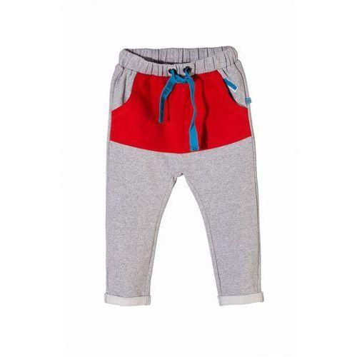 Spodnie dresowe niemowlęce 5m3403 marki 5.10.15.