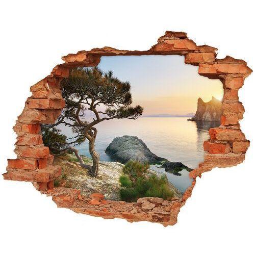 Wallmuralia.pl Dziura 3d w ścianie naklejka drzewo nad morzem