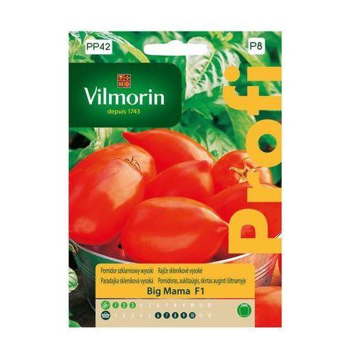 Vilmorin Pomidor szklarniowy big mama nasiona tradycyjne 0.1 g (5907617323100)