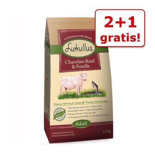 Lukullus 2 + 1 gratis! karma dla psa , 2 x 1,5 kg - adult, kaczka piżmowa i jagnięcina (4260077048220)