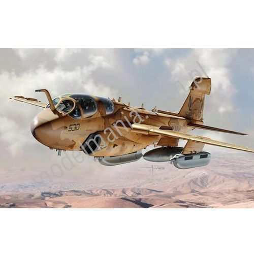 Samolot walki elektronicznej Northrop Grumman EA-6B Prowler Italeri 2698 (8001283026987)