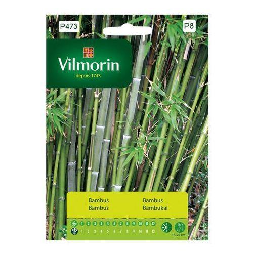 OKAZJA - Bambus mrozoodporny  marki Vilmorin