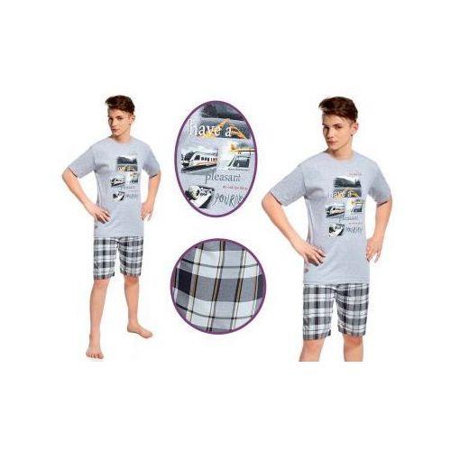 Piżama męska RONI: szary, kolor szary