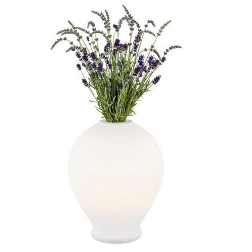 Argon Lampa stołowa amarylis 4095 –