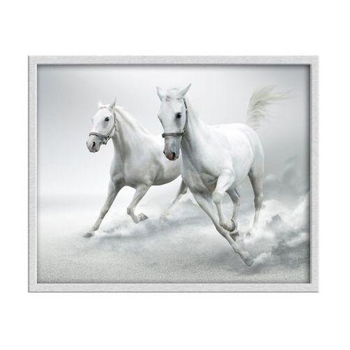 Knor Obraz konie 53 x 43 cm