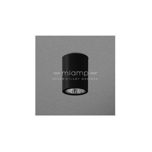 Downlight LAMPA sufitowa PET FINE surface 42311-0000-U8-PH-kolor Aqform metalowa OPRAWA tuba (1000000263961)