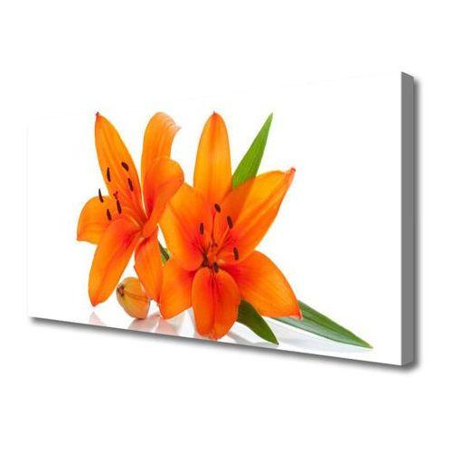 Obraz na Płótnie Pomarańczowe Roślina Kwiaty