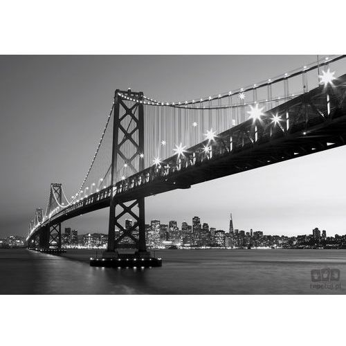 Fototapeta San Francisco Skyline 958