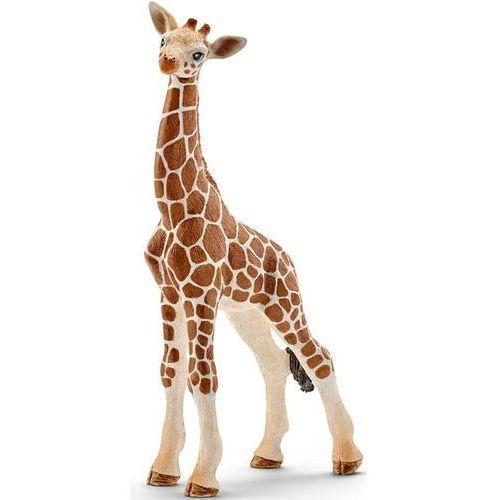 Schleich młoda żyrafa