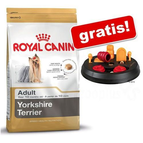 Royal canin breed Duże opakowanie + trixie dog activity flip board zabawka dla psa gratis! - french bulldog junior, 10 kg (3182550777674)