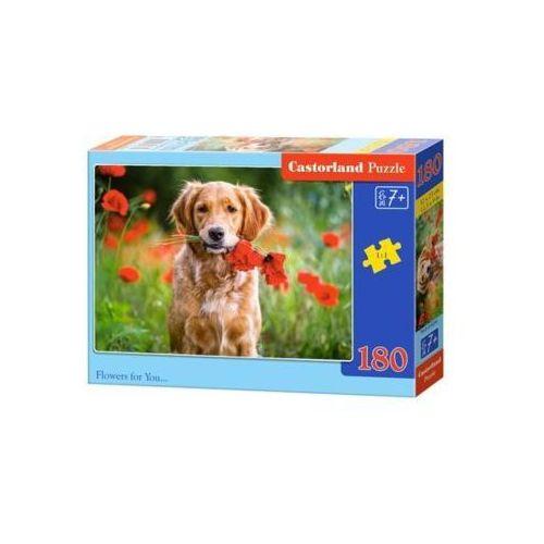 Castor 180 elementów kwiaty dla ciebie