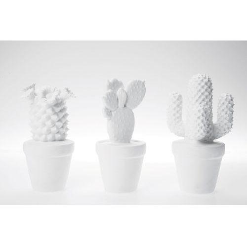 Kare design :: dekoracyjny cactus - kare design:: dekoracyjny kaktus ||biały ||srebrny