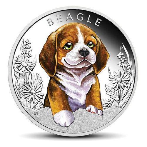 Srebrna moneta Szczeniaki: Beagle - wysyłka 24 h!