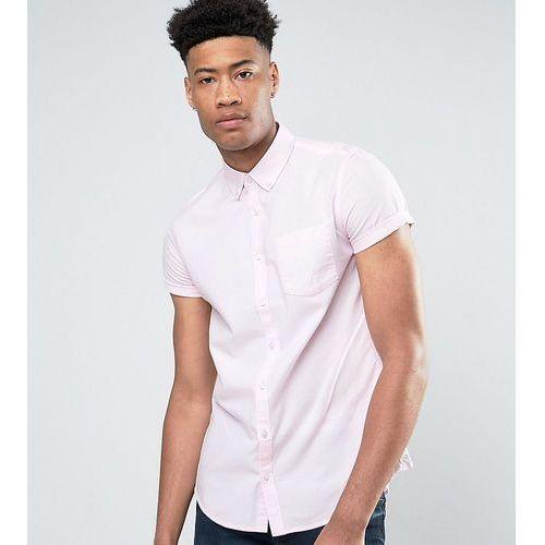tall short sleeve oxford shirt in pink - pink, Burton menswear