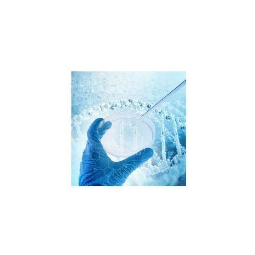 Cytologia cienkowarstwowa + badanie cintec plus p16/ki-67 marki Cb dna