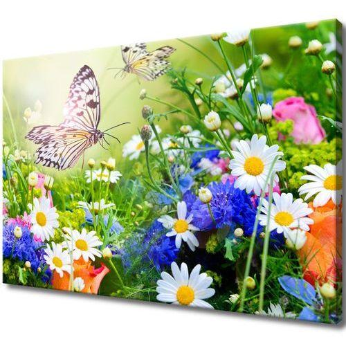 Obraz na ścianę piękny ogród piękny ogród delikatn marki Cenodi
