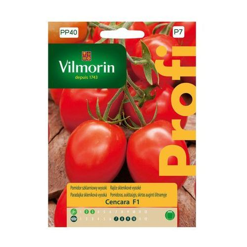 Vilmorin Pomidor szklarniowy cencara nasiona tradycyjne 0.2 g (5907617323070)