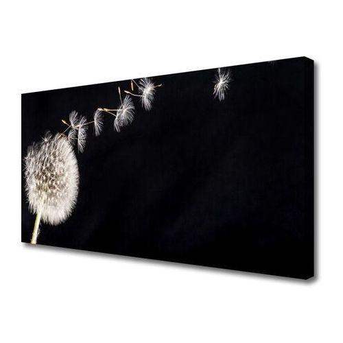 Tulup.pl Obraz canvas dmuchawiec kwiat roślin