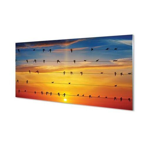 Obrazy akrylowe ptaki na linach zachód słońca marki Tulup.pl