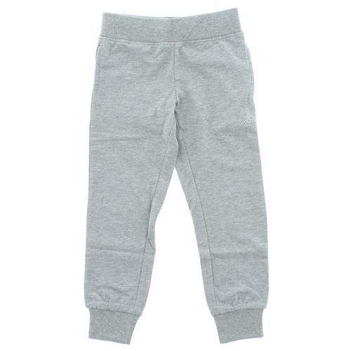 Geox Spodnie dresowe dziecięce Szary 5 lat, kolor szary
