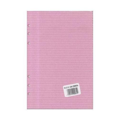 Wkład do segregatora A5 linia kolorowa kartka - różowa (5904210000629)