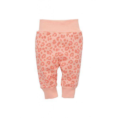 Spodnie niemowlęce 5m35al marki Pinokio