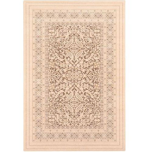 Dywan Agnella Alabaster Sonkari W Jasne Kakao 120x180