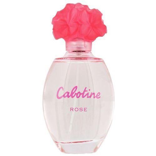 Gres cabonite rose 100ml (7640111492108)