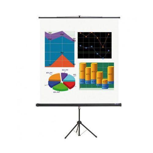 Ekran projekcyjny na statywie basic, 2400 x 1800 mm marki B2b partner
