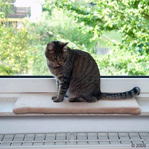 Legowisko dla kota na parapet Plush, beżowe - Dł. x szer. x wys.: 60 x 26 x 2 cm