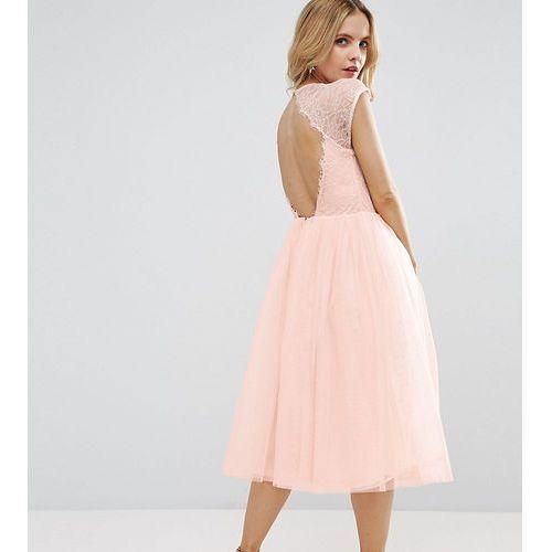 Asos petite premium lace tulle midi prom dress - beige