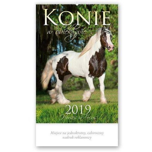 Lucrum Kalendarz 2019 reklamowy konie w obiektywie rw22