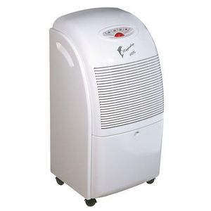Fral Flipper Dry 300 ION, Fral Flipper Dry 300 Ionizer