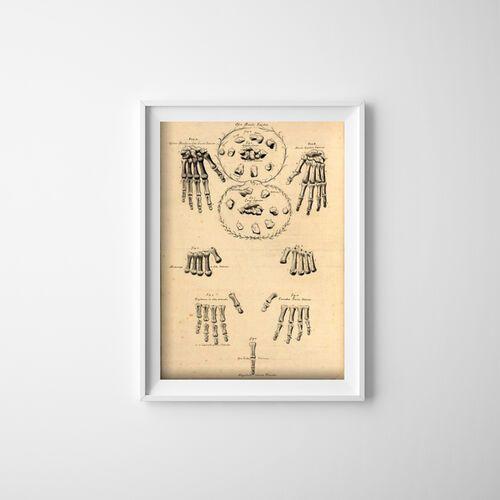 Plakat retro plakat retro dłonie i palec john fotherby marki Vintageposteria.pl