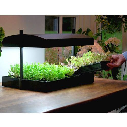 Propagator z oświetleniem do domowej hodowli warzyw i ziół Garland - sprawdź w wybranym sklepie