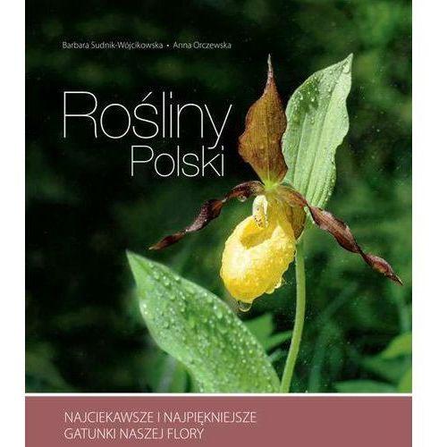 Rośliny Polski - Sudnik-Wójcikowska Barbara, Orczewska Anna (320 str.)