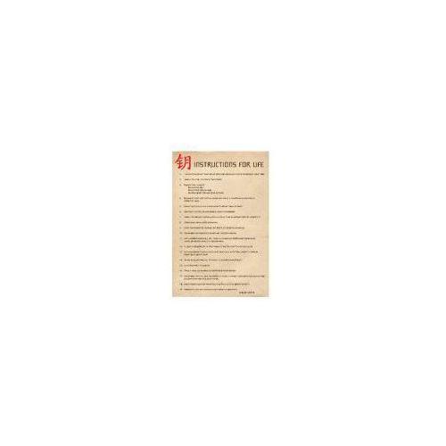 Galeria Instrukcja zycia (dalai lama ang.) - plakat (5050574310048)