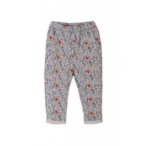 Spodnie dresowe niemowlęce 5m3301 marki 5.10.15.