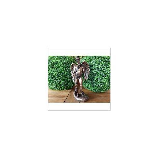 Steampunk skrzydlaty akt męski w otwartej dłoni (wu77043a4) marki Veronese