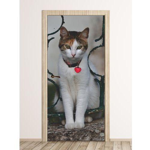 Wally - piękno dekoracji Fototapeta na drzwi kot z serduszkiem fp 6171