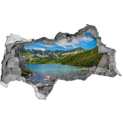 Dziura 3d w ścianie naklejka Dolina Tatry