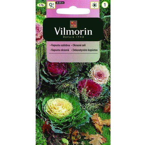 Kapusta ozdobna 0.1g Vilmorin