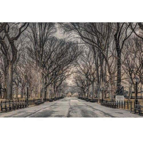 Nowy Jork Central Park Assaf Frank - plakat (5028486373710)