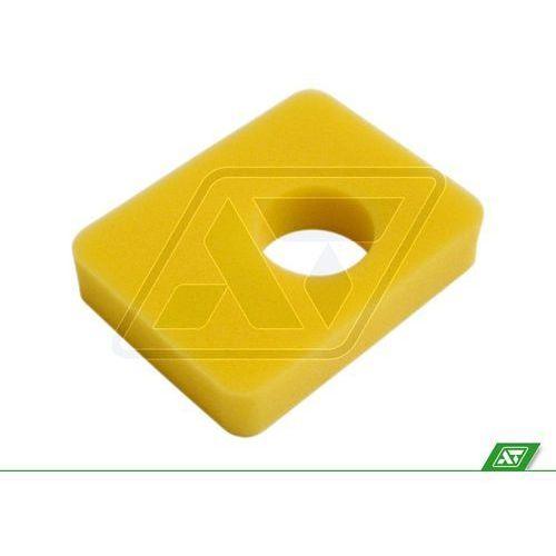 Filtr powietrza Briggs & Stratton 799579 z kategorii pozostałe narzędzia ogrodowe